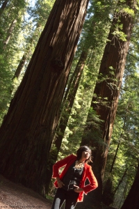 red jacket with the redwoods